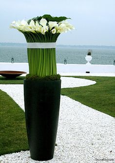 Ciao Bella Events Local Professional 949-514-1651 Call us for FREE advice or visit us at www.CiaoBellaLagunaBeach.com