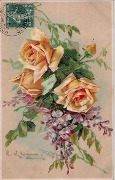 CPA Klein - Photo de Les roses de C. Klein (peintre) (Cartes postales anciennes) - Mon jardin de roses anciennes