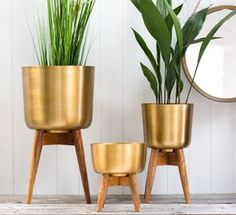 Brass Plant Pot On A Wooden Stand - gifts for friends
