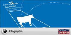 Pour rédiger leur étude, les scientifiques ont analysé les données sur les champs d'élevage, l'utilisation des ressources en eau et les engrais, des données fournies par les ministères américains de l'Agriculture, de l'Energie et des Affaires intérieures, pour les années 2000-2010.