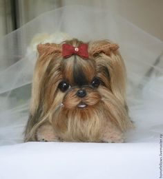 York Puppy Teddy handmade.  Fair Masterov- handmade.  Buy Yorkshire Terrier Puppy Teddy bead.  Teddy puppy.  Handmade