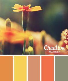 Color Palette For Fall Fall Color Palette, Colour Pallette, Color Combos, Pantone, Room Color Schemes, Color Naranja, Color Balance, Design Seeds, Colour Board