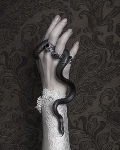 Movie Posters : Death and Taxes SALE on BloodMilk Jewels ! Witch Aesthetic, Character Aesthetic, Aesthetic Dark, Pretty Snakes, Images Esthétiques, Arte Obscura, Slytherin Aesthetic, Hand Reference, Dark Photography