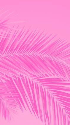 Summer wallpaper iphone pink sun Ideas for 2019 Love Pink Wallpaper, Whats Wallpaper, Summer Wallpaper, Pink Wallpaper Iphone, Pink Iphone, Trendy Wallpaper, Screen Wallpaper, Cute Wallpapers, Mobile Wallpaper