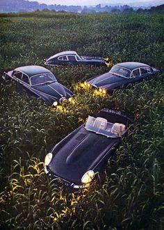 Jaguar advertisement 1968