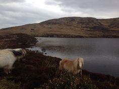 Loch Sgioport, South Uist