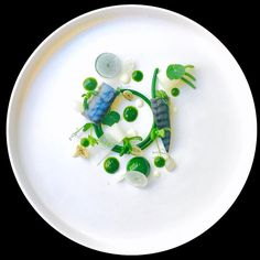 "1,506 Likes, 9 Comments - World's Finest Food Plating (@gourmetartistry) on Instagram: ""Mackerel, spinach spaghetti, burnt onion and marinated daikon by @marco_tola_chef_ ____________ *…"""