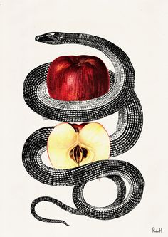Red Temptation snake and apple Print Wild art print by PRRINT