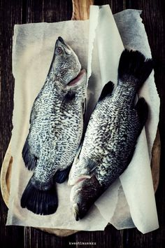 I don't eat fish, but they're beautiful. Maybe that's why I don't eat fish. I don't know.