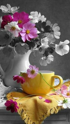Splash Photography, Coffee Photography, Color Photography, Pretty In Pink, Beautiful Flowers, Splash Images, Wonderful Day, Still Life Photos, Nature Pictures