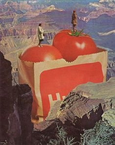 Jesse Treece   Collage King inspiration
