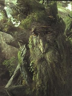 Which Middle-Earth Character Are You. Me and my sister both picked exactly the same thing and we both got an Ent