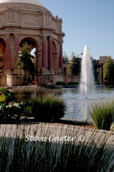 Item of the Day August 26:  Fountain at the Palace of Fine Arts, San Francisco by StevesPhotosandCards