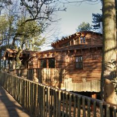 Want a unique and luxurious treehouse break in the forest? Book one of our stunning open-plan Treehouses with hot tub and games room Normal House, Sherwood Forest, Closer To Nature, Open Plan Living, Game Room, Woodland, Treehouses, Luxury, House Styles