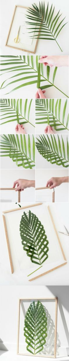 Cuadro con hoja de palma / Via http://monsterscircus.com/ (Diy House Frame)