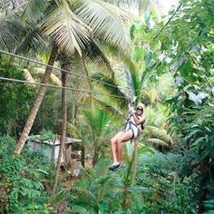 Zip lining in the rainforest...a MUST!