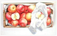 사과 그림만 그리는 작가? 윤병락의 사과 그림 : 네이버 블로그 Apple, Rock, Fruit, Vegetables, Drawings, Illustration, Watercolor Painting, Paint, Water Colors