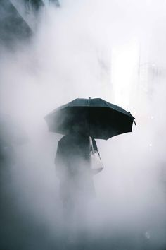 Umbrella by Ryan Millier - Photo 185515625 / 500px