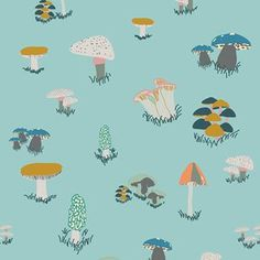 Sara Lawson - Fantasia - Agaricus Forest in Water