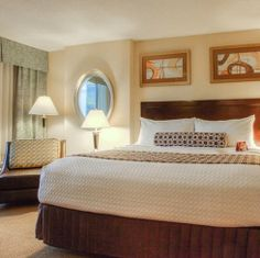 420 Friendly Hotel Rooms | My 420 Tours