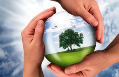Curso Responsabilidade Social e Sustentabilidade | CENED Cursos Online - http://www.cenedcursos.com.br/curso/curso-responsabilidade-social-e-sustentabilidade/#utm_sguid=174709,da44ca99-4fd6-4dfd-1b2b-9c63ea1c7127