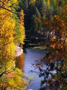 Nuuksio National Park / Minna Rosé blog  http://minna-rose.blogspot.fi