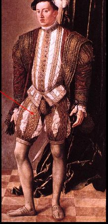 Gentleman In Pink Wearing A Doublet Hoes Exaggerated Puffed Shorts Brocaded Belted With Small Cod Renaissance Portraits Renaissance Fashion Renaissance Men