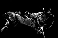 Kagi geri Hapkido, Martial Arts, Kicks, History, Historia, Combat Sport, Aikido, Martial Art