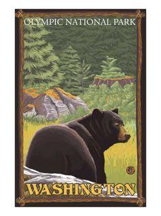 National park poster - Olympic National Park, Washington Estes Park Colorado, Canyon Colorado, Silverton Colorado, Colorado Mountains, Rocky Mountains, National Park Posters, National Parks, Waterton National Park, Waterton Park