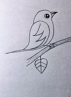 Pretty Easy Drawings, Bird Drawing For Kids, Simple Bird Drawing, Bird Pencil Drawing, Art Drawings For Kids, Art Drawings Sketches Simple, Bird Drawings, Pencil Art Drawings, Cute Drawings