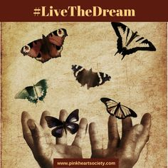In an exciting month for PHS Founder and Editor Trish Wylie, she encourages us to Live The Dream!