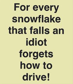 There are plenty of idiots who don't know how to drive in the rain..let alone the snow. Pull over and get the fuck outta the way asshole! Funny Images, Funny Winter Quotes, Funny Winter Pictures, Winter Sayings, Winter Jokes, Funny Quotes, Funny As Hell, Haha Funny, Hilarious