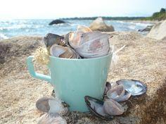 mermaid tea party on the beach #SunSandSea