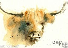 ORIGINAL WATERCOLOUR PAINTING ACEO HIGHLAND COW CATTLE UK ABSTRACT ART SIGNED