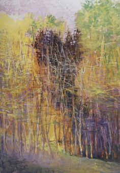 brambly woods ~ oil on canvas ~ c.2006 ~ by wolf kahn