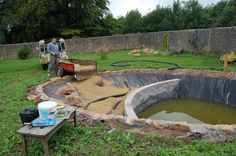 Creating a natural swimming pond, see full article.