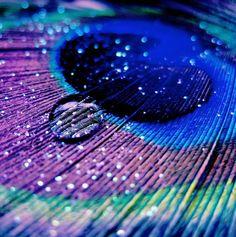 NubeS Y CerezaS: Agua.