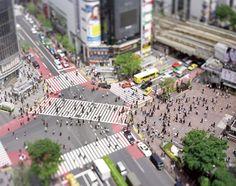 本城直季写真展「diorama」