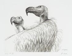Vulture II', Henri Gaudier-Brzeska   Tate
