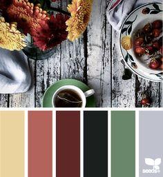 color serve 11.3.15