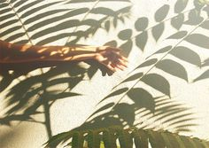 L'ESTHETIQUE DE L'INVENTAIRE — fabio astone