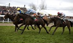 Air of anticipation mounts as Cheltenham Festival edges ever closer Sports Headlines, Horse Racing, Ufc, Sports News, Cricket, Closer, Football, Horses, Animals