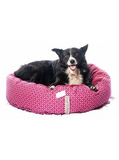 Donut Bed - Beds - At Home - Cats Pet Life, Cat Food, Dog Food Recipes, Bean Bag Chair, Blankets, Beds, Plush, Cat Feeding, Dog Recipes