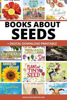 Teaching your kids about gardening and growing? Choose from these 15 books about seeds for kids to help them learn about the life cycle of seeds. Science Lessons, Science For Kids, Earth Science, Teaching Plants, Teaching Kids, How Plants Grow, Emergent Literacy, Planting For Kids, The Tiny Seed