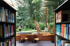 Resource Centre: A leafy outlook creates a sense of calm and wellbeing. Image: Christopher Frederick Jones