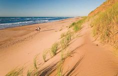 on the dunes of Greenwich Beach in Prince Edward Island National Park, PEI, Atlantic Canada O Canada, Canada Travel, Canada Trip, Parc National, National Parks, Exposition Interactive, Voyager Loin, Destinations, East Coast Road Trip