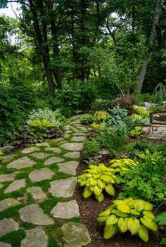 Landscape Ideas and Garden Design Pictures, Remodels and Decor - in the shade