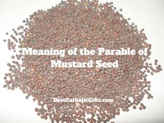 What is the Meaning of the Parable of the Mustard Seed? - Best Catholic Gifts Synoptic Gospels, Kingdom Of Heaven, Catholic Gifts, Gods Grace, Blessed Mother, Mustard Seed, Jesus Quotes, Planting Seeds, Free Gifts