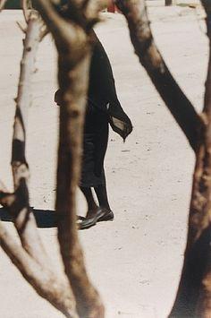 Saul Leiter: 'Woman in Black Seen Through Trees'.