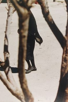 This artwork, Woman in Black Seen Through Trees by Saul Leiter